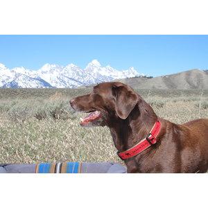 Ebinger Preston Preston Jackson Hole Moose Collar