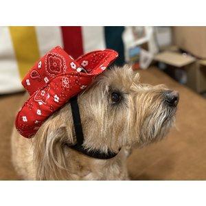 Poshpups Dog Cowboy Hats handmade