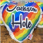 Mirage Pet Products Mirage Jackson Hole Heart Toy Rainbow
