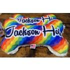 Mirage Pet Products Mirage Jackson Hole Bone Toy Rainbow
