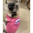 Mirage Pet Products Teton Tails Dog T-shirt