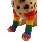 Puppe Love Pride Leg Warmers 4pc