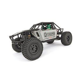 Team Associated Gatekeeper Rock Crawler Buggy R