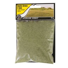 Woodland Scenics Static Grass, Light Green 2mm