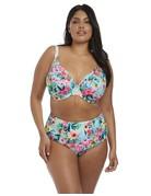 Elomi Aloha High Waisted Swim Bottom 7155