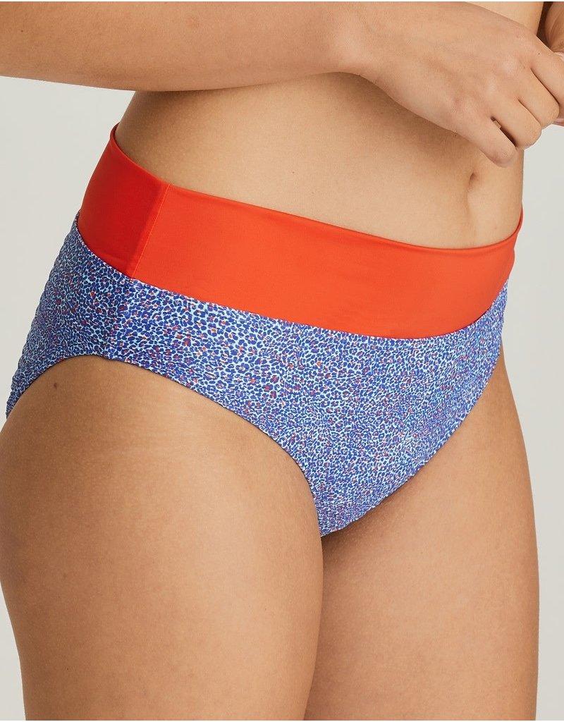 PrimaDonna Jacaranda Bikini Bottom 400-6555