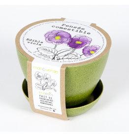 Mano Verde Minipot Pensée comestible