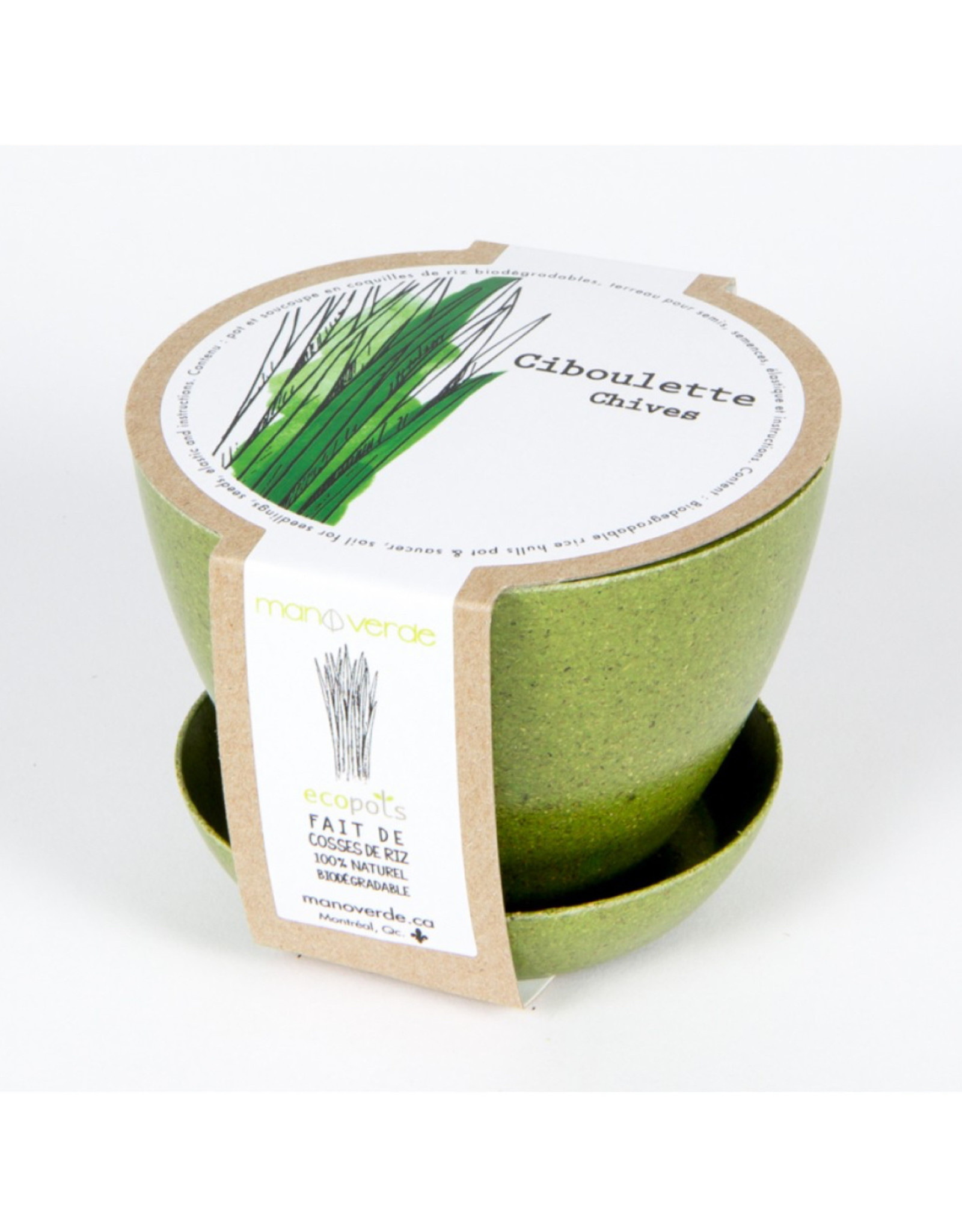 Mano Verde Minipot Ciboulette