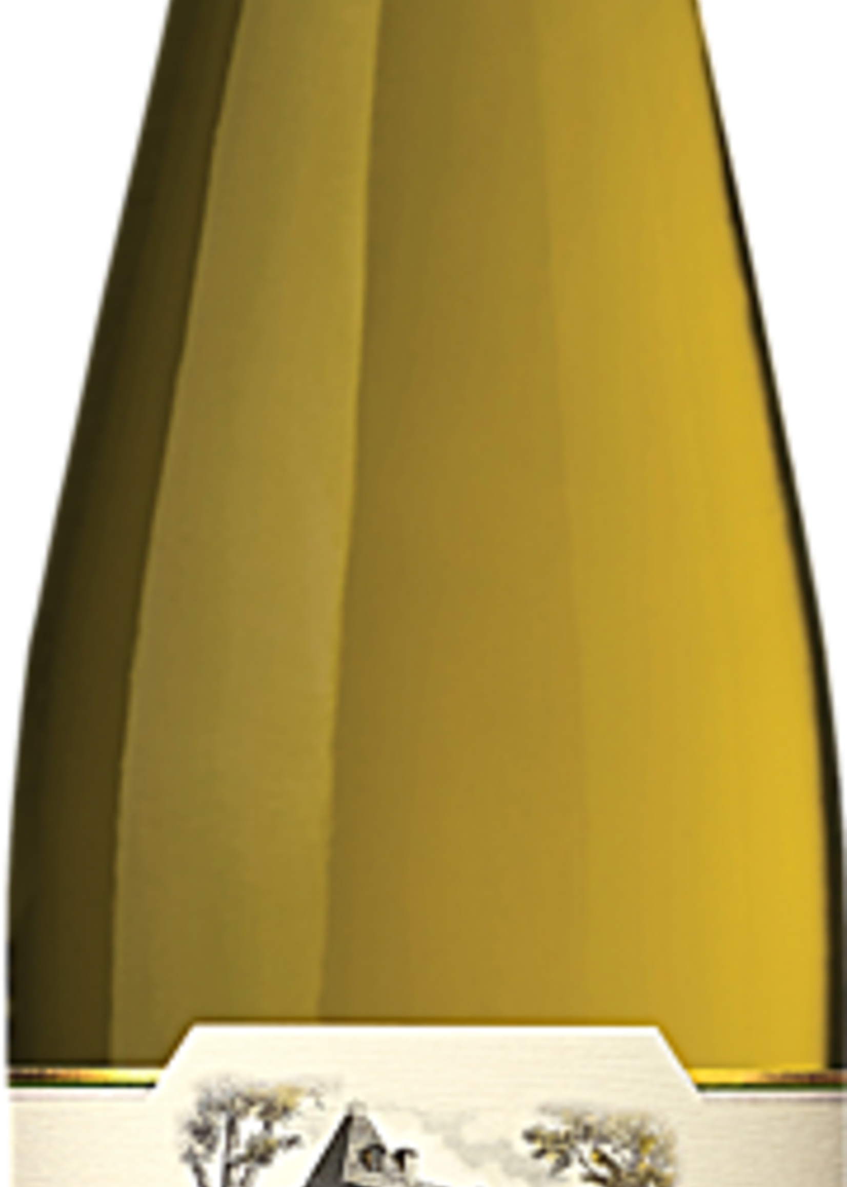 Chateau Ste Michelle Riesling Columbia Valley