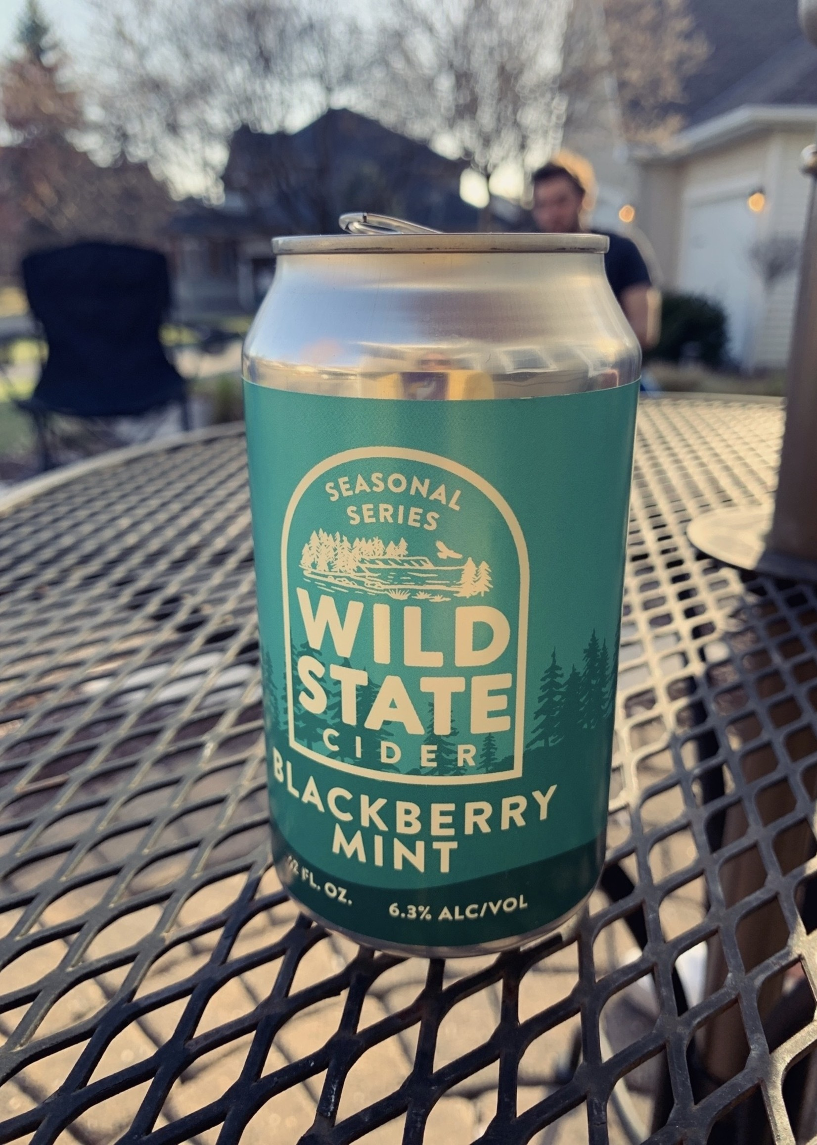 Wild State Blackberry Mint Cider - 4x12oz Cans