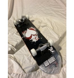 Punked Youth Skateboard Complete