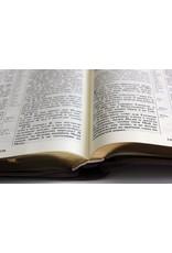 Библия, Каноническая (SYNO), Заменитель Кожи, Коричневая с Узором и Позолотой, Большая