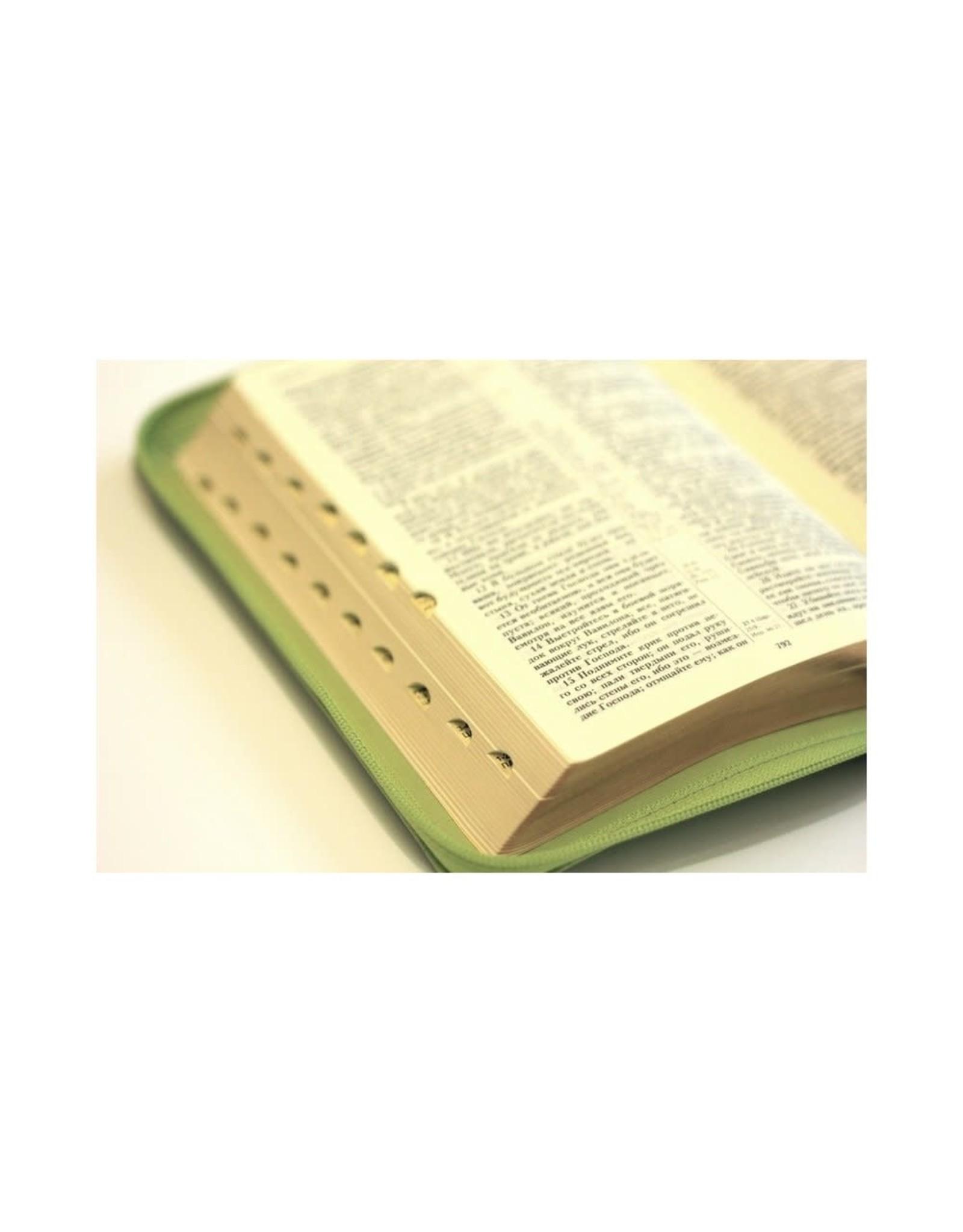 Библия, Каноническая (SYNO), Index, Leather, Small
