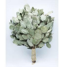 Venik for Banya (Eucalyptus)