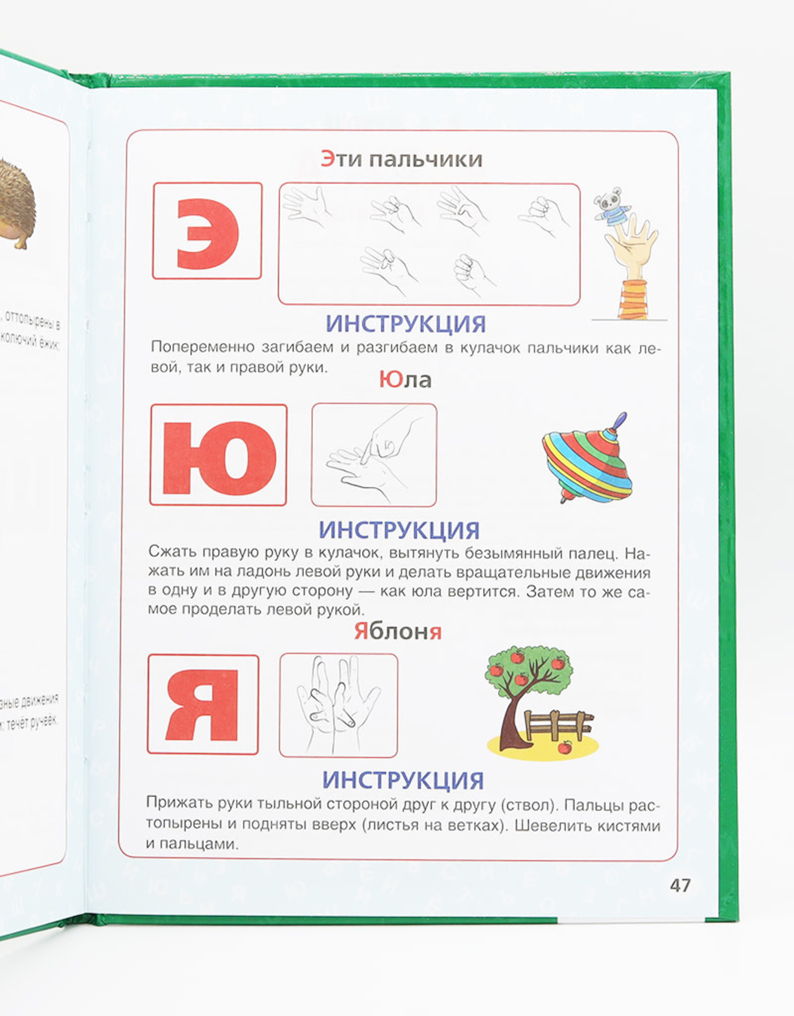 Азбука для малышей, Жукова