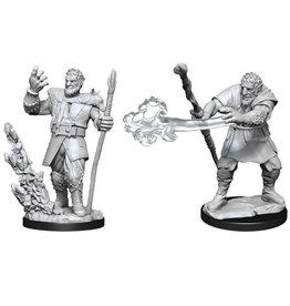 D&D Male Firboig Druid