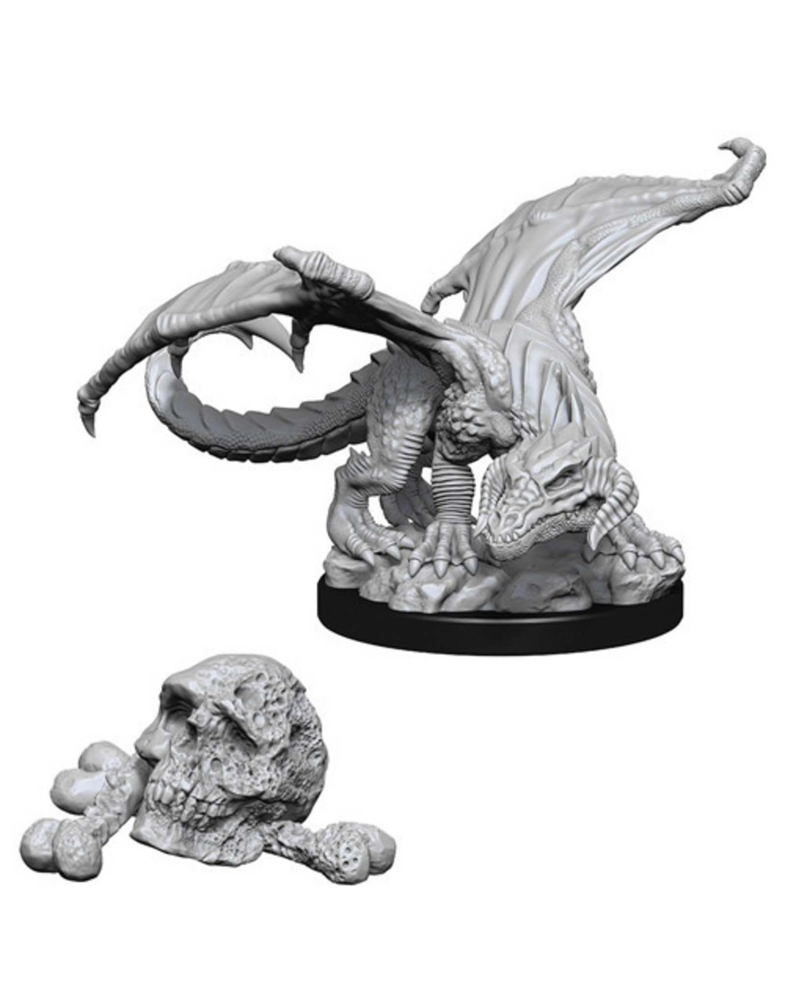 D&D Black Dragon Wyrmling