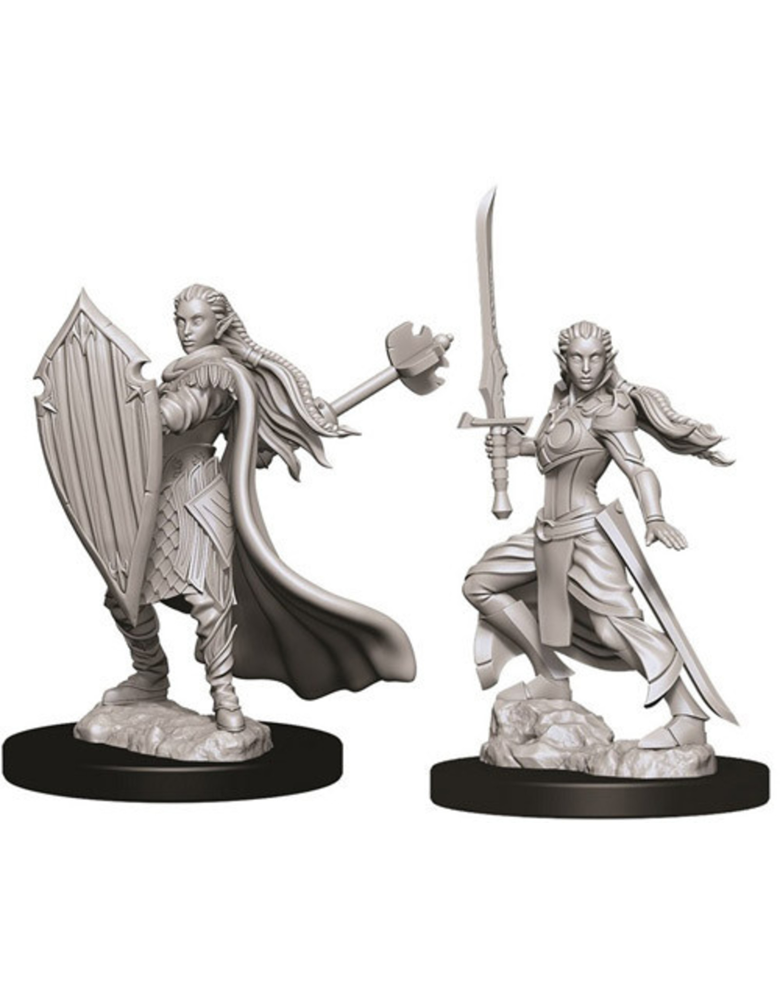 D&D Female Elf Paladin