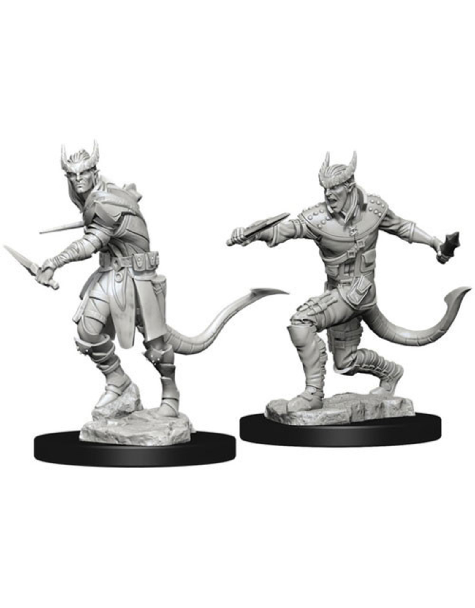 Dungeons & Dragons D&D NMU Tiefling Male Rogue