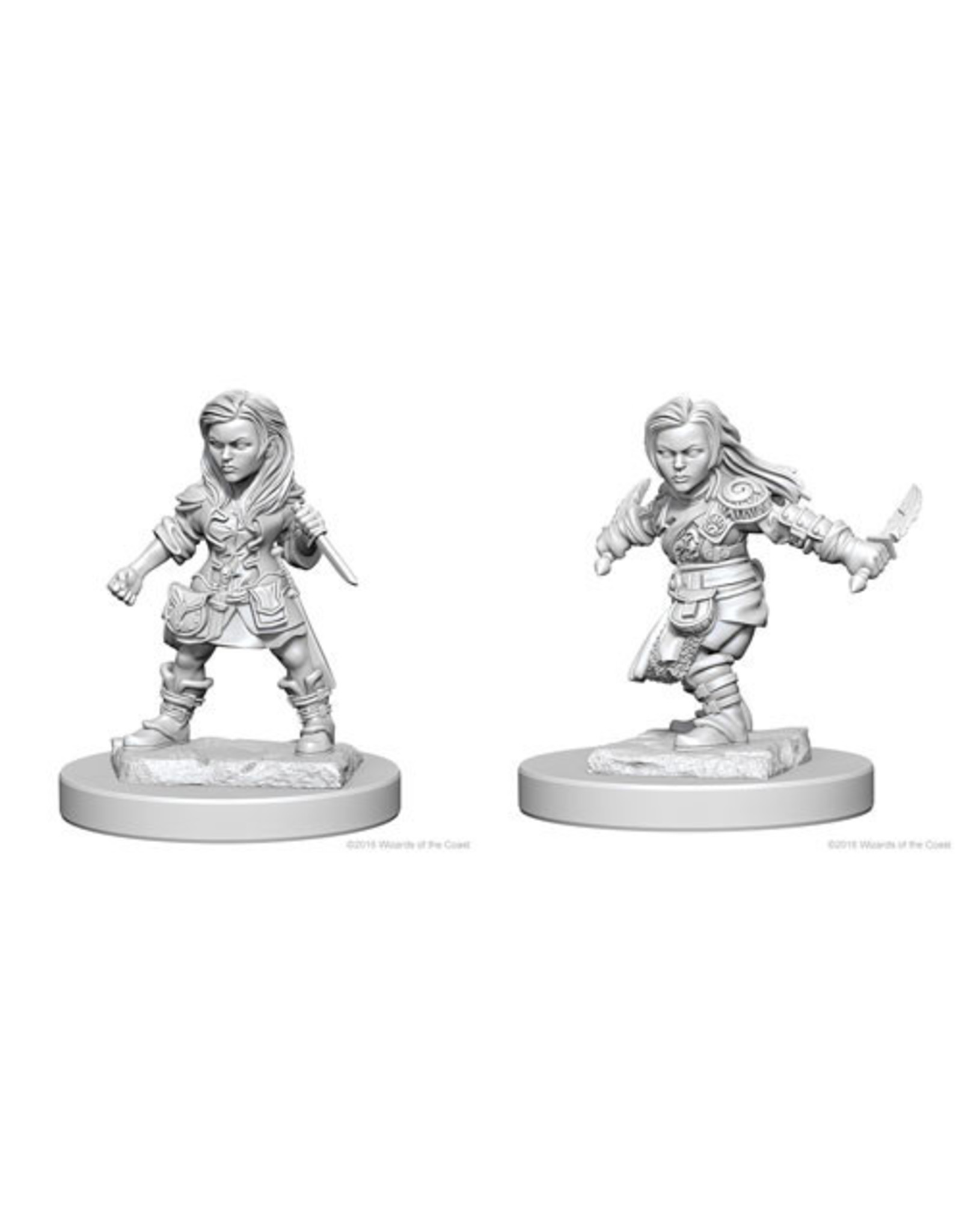 Dungeons & Dragons D&D NMU Halfling Female Rogue