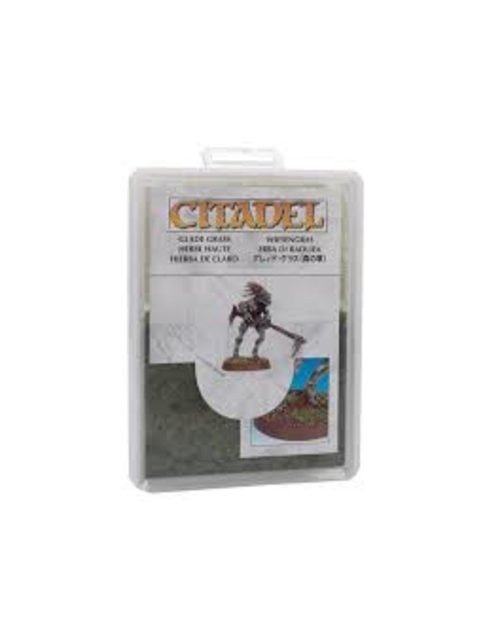 Citadel Glade Grass 15G