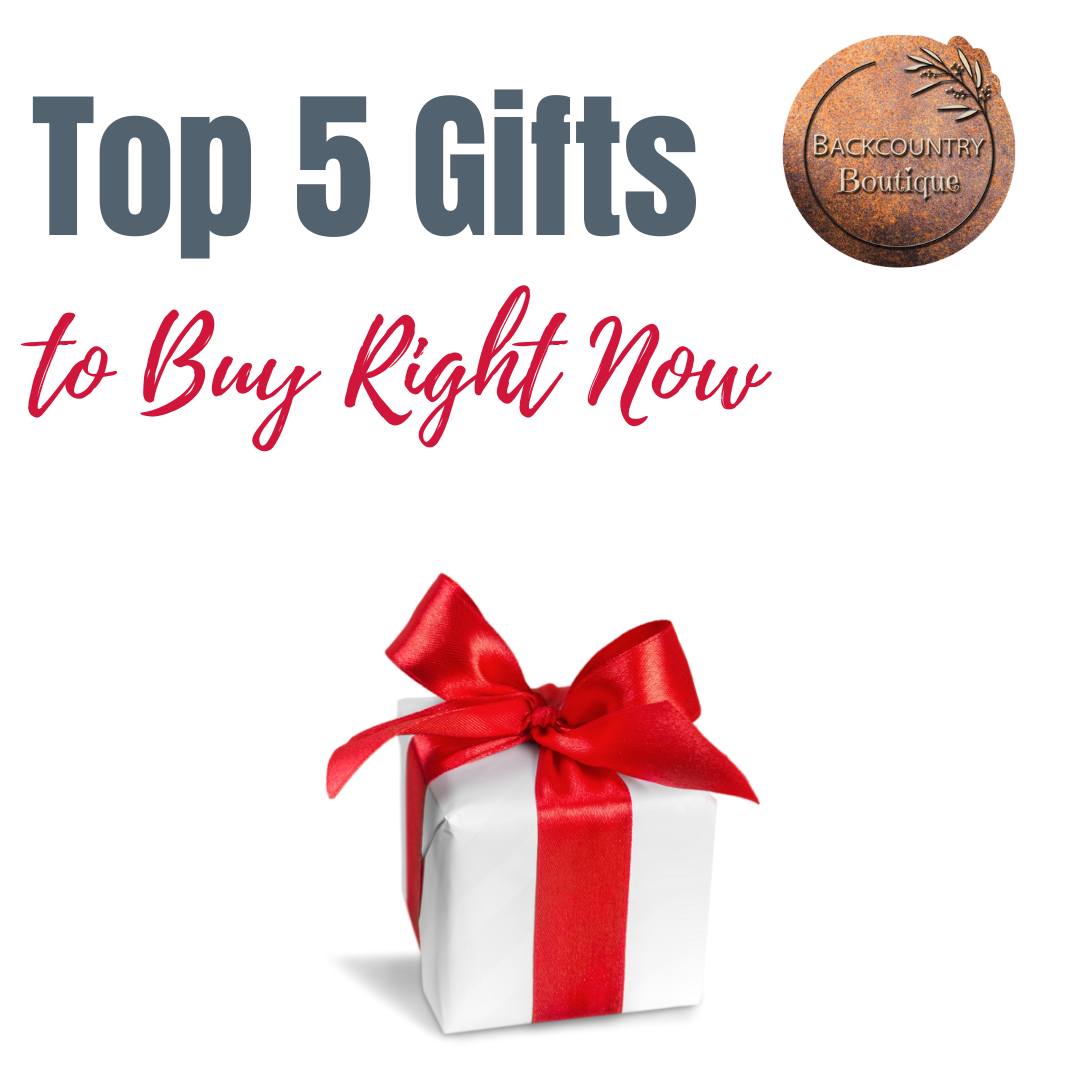 Top 5 Christmas Gifts to Buy Right Now