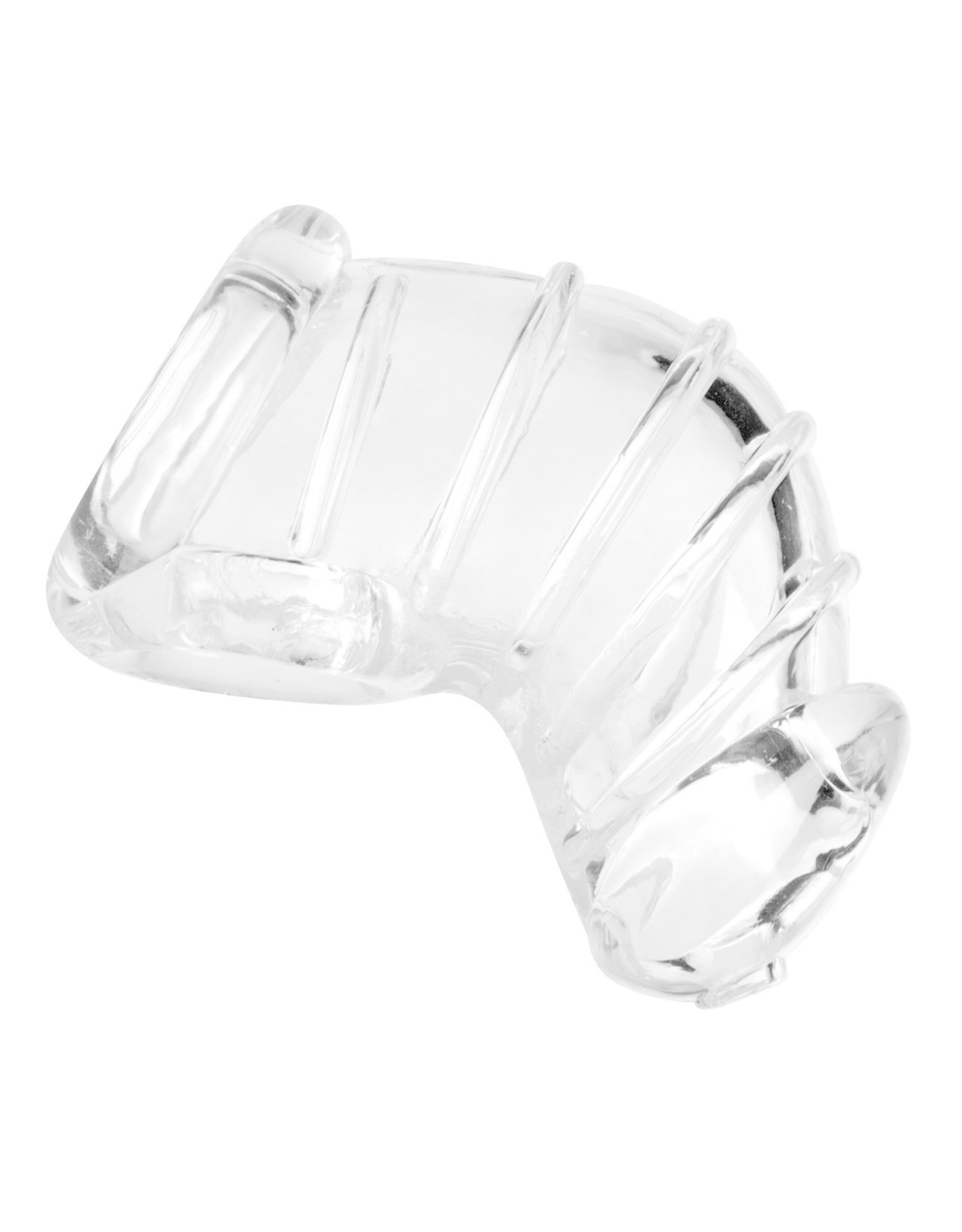 MASTER SERIES - DETAINED CHASTITY CAGE