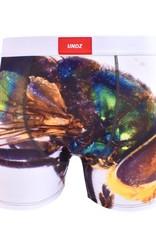 UNDZ Boxer UNDZ Sum20 Classic Dead Fly