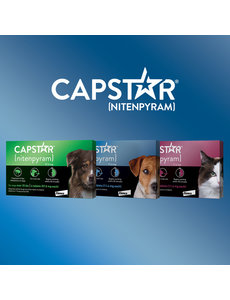 Capstar Flea Treatment for Dogs, 57mg / 6ct box