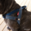 Ezy Dog Quick Fit Harness, Denim