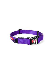 Ezy Dog DoubleUp Collar, Purple