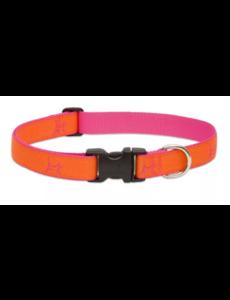 "Lupine Club Sunset Orange 1"" Width Collar Large 16-28"""