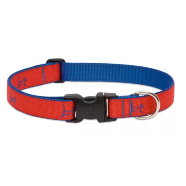 """Lupine Club Derby Red 1"""" Width Collar Large 16-28"""""""