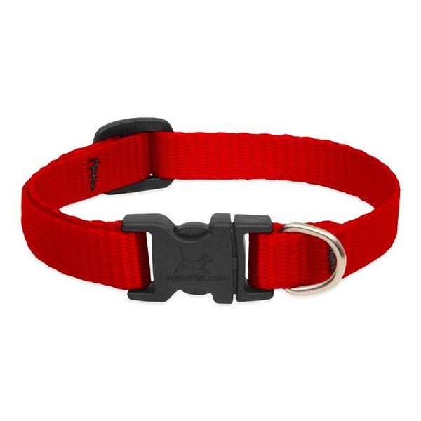 Lupine Basic Solids Dog Collars