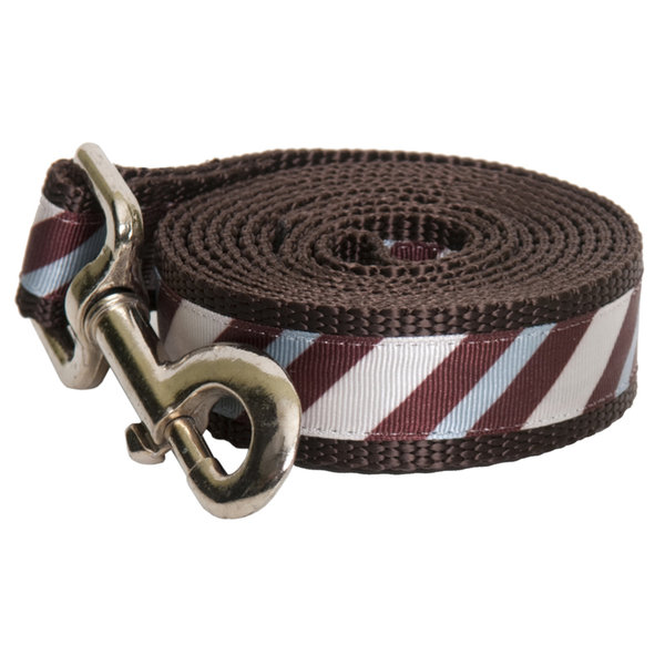 Paw Paws Chocolate Snow Cone Stripe Leash