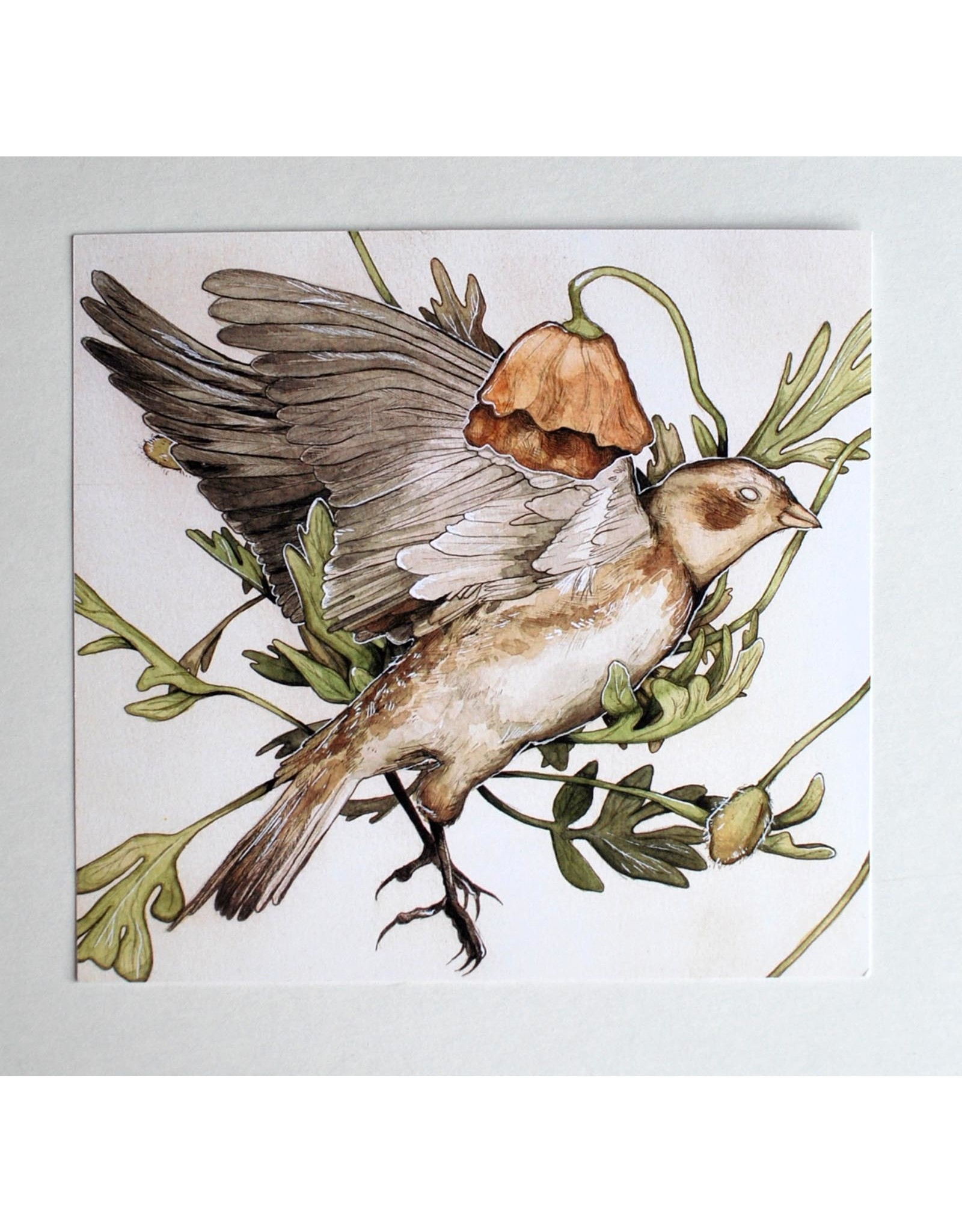 "Shane Tolentino ""Arctic Bunting"" Digital Print by Shane Tolentino"