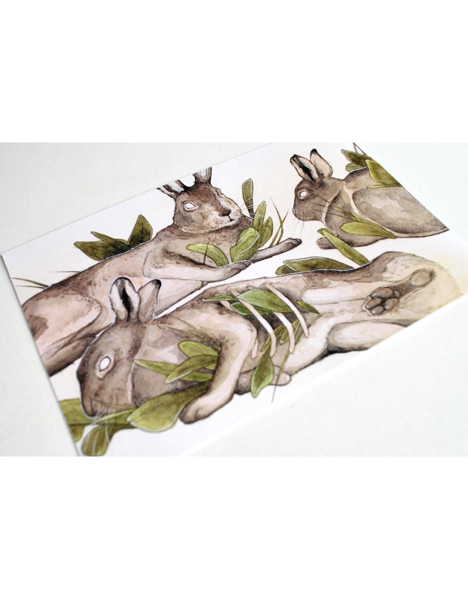 "Shane Tolentino ""Artic Hares"" Digital Print by Shane Tolentino"
