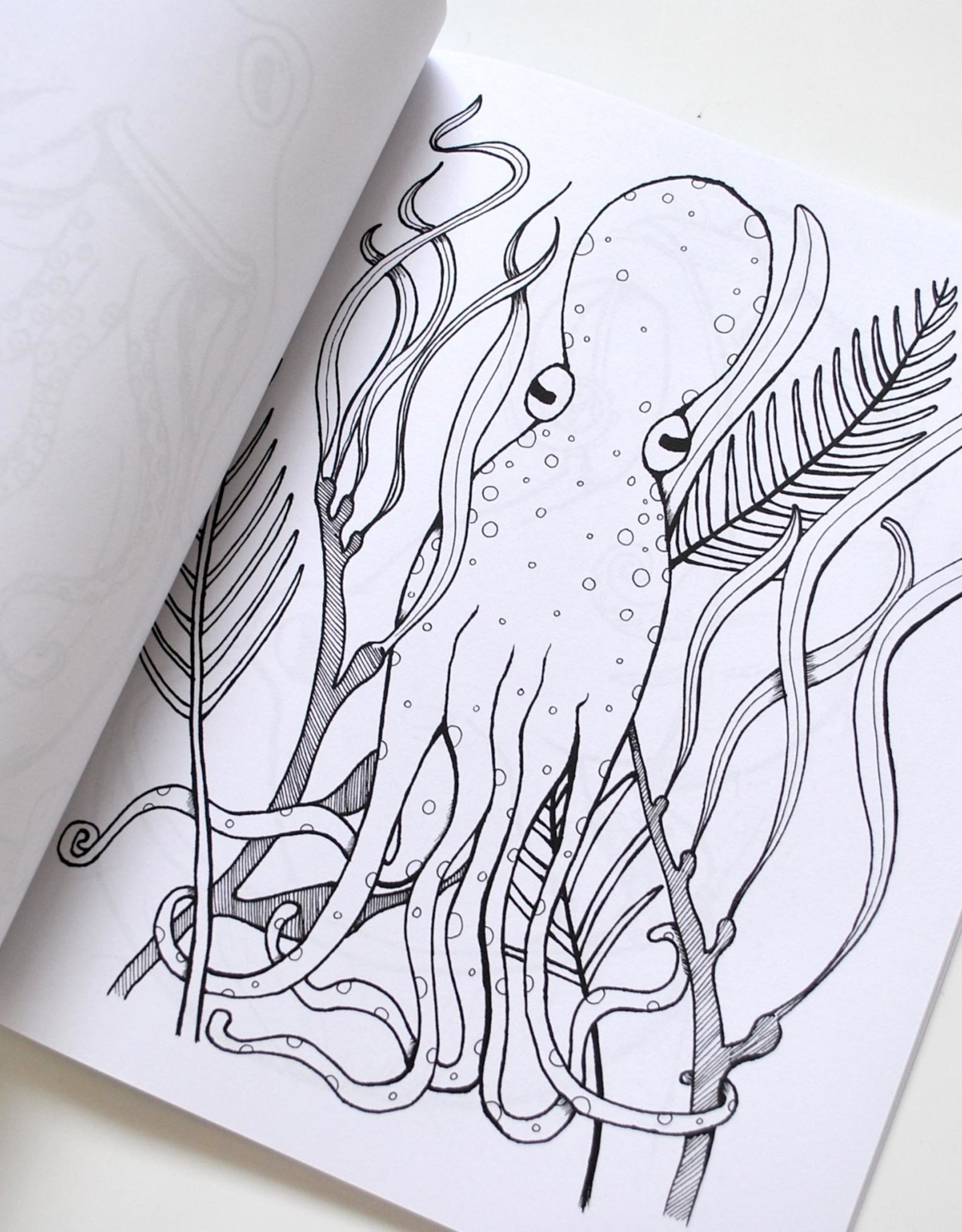 Melissa Rohr Gindling Octopus Coloring Book by Melissa Rohr Gindling
