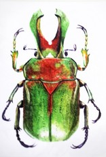 Kirsten Beard Insect Print, 5x7 by Kirsten Beard