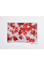 """Coriandrum sativum - Cilantro""  by Heather Monks (5x7 print, 8x10 mat)"