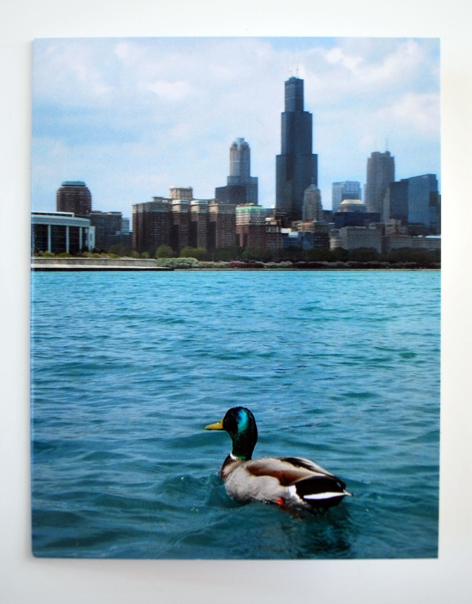 Set of 6 Chicago cards, Larissa Rolley