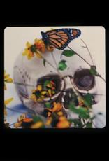 Monarch/Skull Magenet by Larissa Rolley