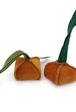 Onion, Amy Hilber