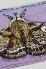 """Moth"" etching with purple hand watercoloring, Lily Cozzens"