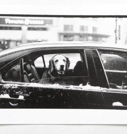 """Good Boy"" silver gelatin print (6.5""x7"") by Ben Lurie"