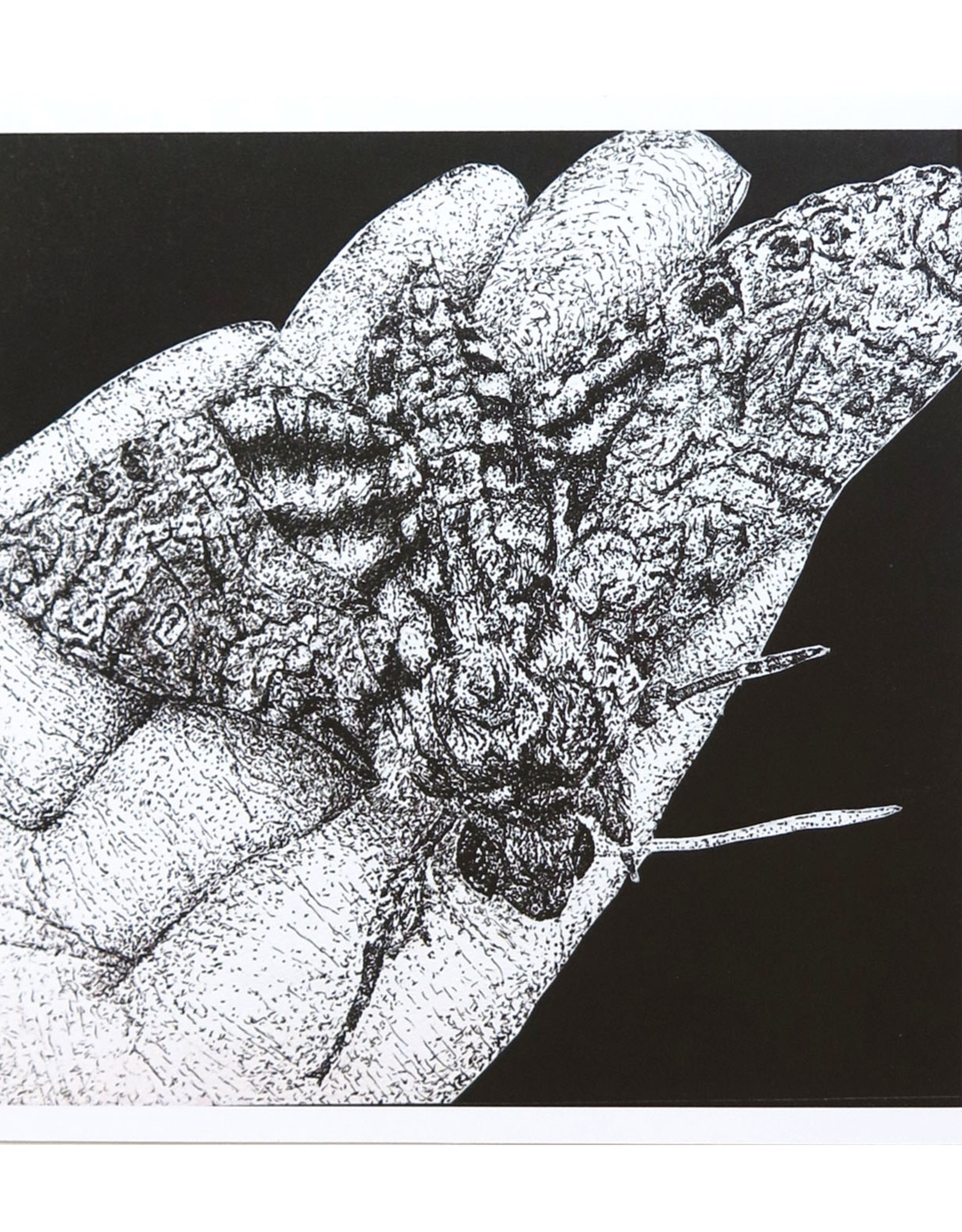 """""""Life in the Palm of Your Hand"""" art print by Giovanna Martin"""