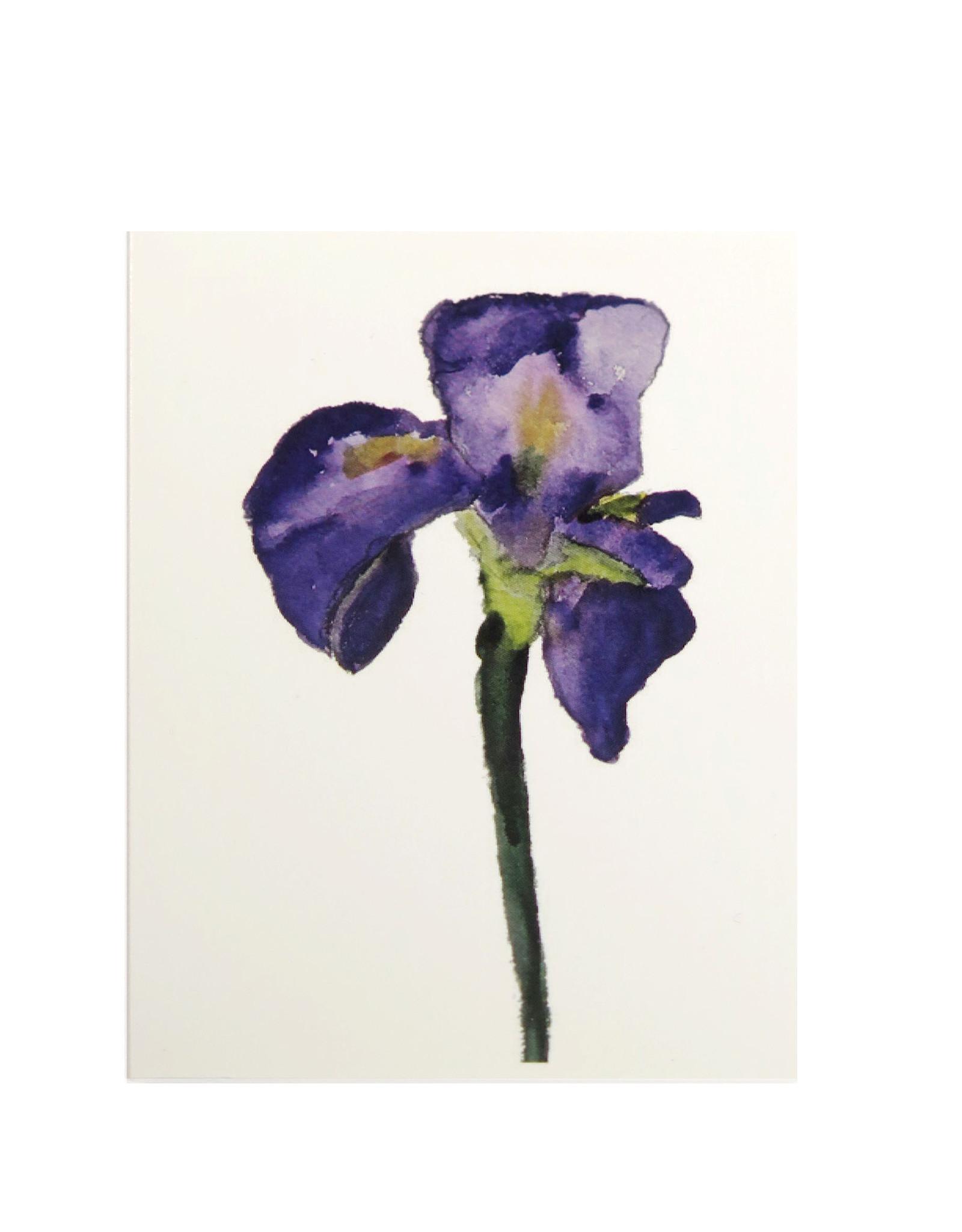 Purple Iris Greeting Card by Michele Williams