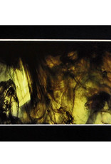 Daria Percy Untitled 2 (chartreuse) Matted 4x6 photograph by Daria Percy