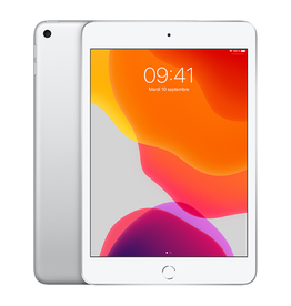 APPLE iPad mini Wi-Fi 64 Go - Argent