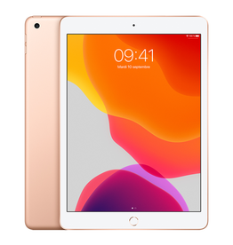 APPLE iPad 10,2 po Wi-Fi 128 Go - Or